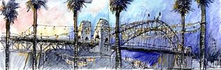 Sydney Harbour evening