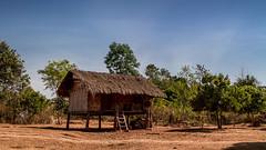 Typical house, Laos (pas le matin) Tags: house laos maison lao asia asie travel southeastasia voyage world architecture sky blue ciel bleu scale canon 7d canon7d canoneos7d eos7d bolaven bolavenplateau