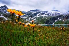 Weisssee, Salzburg, Austria (qqazwws18) Tags: ngc sonya6000 sony taiwan sky mountain lake austria salzburg weisssee travel