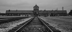Auschwitz Birkenau (Andy barclay) Tags: auschwitz birkenau poland death camp holocaust europe ww2 world war german
