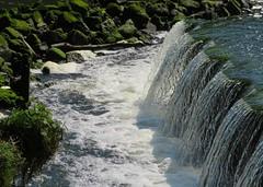 Beeleigh Mill Weir (Stuart Axe) Tags: maldon essex uk england riverblackwater countyofessex unitedkingdom greatbritain maldondistrict riverchelmer beeleigh beeleighmill beeleighweir beeleighabbey heybridge canal chelmerandblackwaternavigation weir lock gb whitewater langford bridge