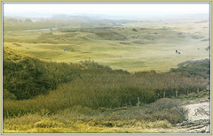 Golf dans les dunes de Dombourg, Walcheren, Zeelande, Nederland (claude lina) Tags: claudelina nederland paysbas hollande zeeland zélande dombourg domburg plage beach dunes mer sea merdunord noordzee golf