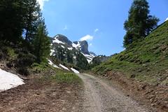 arrivée à Petit Pré (bulbocode909) Tags: valais suisse ovronnaz petitpré montagnes nature alpages chemins névés neige printemps arbres forêts mélèzes vert grandchâteau