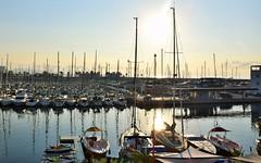 Llegando a puerto/ Arriving to a harbor. (PURIFM) Tags: nikon harbor sea puerto mar barco amanecer dawn reflejos waterreflections barcelona agua water