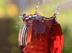 Wine splash (~ **Barbara ** ~) Tags: macromondays refreshments wine splash myfavouritedrink macro water nonalcoholic blackcurrant juice canon7dii icecube garden highspeedphotography