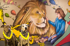 Pinto and Levi (Ellsasha) Tags: therapydogs educationalambassador art murals anatronen houston texas southmayd dogs canine