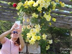 Parque Cervantes. (habanera19) Tags: habana habanera cubana chica fotografía fotografíaurbana strret nature urbana retrato selfi woman sumer verano floresamarillas flover beautiful mujer cataluña españa barcelona parquecervantes flores