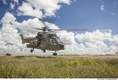 H-36 Caracal (Força Aérea Brasileira - Página Oficial) Tags: 1gav8 cpbv cpbvcampodeprovasbrigadeirovelloso cachimbo campodeprovasbrigadeirovelloso caracal esquadraofalcao eurocopterec725 fab forcaaereabrasileira forçaaéreabrasileira fotojohnsonbarros h36caracal helicoptero brazilianairforce novoprogresso pa brazil bra
