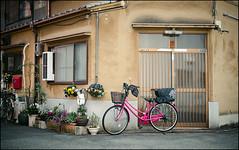 A Quiet Scene (David Panevin) Tags: fukushima fukushimaku 福島区 大阪 osaka kansai japan olympus omd em1 lumixg20mmf17iiasph street path building bicycle flowers urbanfragments davidpanevin