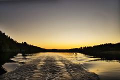 Älven 20180716 (johan.bergenstrahle) Tags: 2018 älv båt boat evening finepicsse juli july kväll landscape landskap natur river solnedgång sommar summer sunset sverige sweden umeälv umeriver vännäs