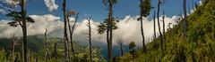 Ascendiendo al Cerro Mayo (macsbruj) Tags: parquefutangue regióndelosríos chile cl riñinahue panoramic panorámica lagoranco lake landscape paisaje paisagem