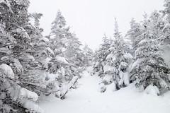 2018 Olivier Ski Life (PYKtures' Life) Tags: montreal winter ski 2018 life olivier orford
