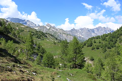 Ovronnaz (bulbocode909) Tags: valais suisse ovronnaz pansdesmodzons montagnes nature printemps paysages forêts arbres nuages vert bleu neige groupenuagesetciel