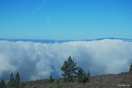 Понад хмарами, Тенеріфе, Канарські острови  InterNetri  006