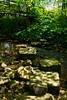 stepping stones or bridge? (visualtheology.blogspot.co.uk) Tags: bridge stream steppingstones northyorkshire