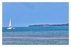 Extreme Blue (GR167) Tags: sigma150600 sailboat sail ruleofthirds sigmaforcanon floridabay floridakeys catamaran blue fullframe canon canon5dmarklll