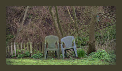 Chairs. (tetleyboy) Tags: garden plastic green lichen tree grass old 500px frame