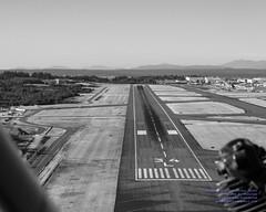 Peeking Down Paine Field (KPAE) Runway 34L (AvgeekJoe) Tags: aerialphotograph bw blackwhite blackandwhite d5300 dslr kpae nikon nikond5300 painefield runway snohomishcounty usa washington washingtonstate aerial aerialphoto aerialphotography airport