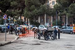2014 03 15 Palermo Cefalu large (17 of 288) (shelli sherwood photography) Tags: 2018 cefalu italy palermo sicily