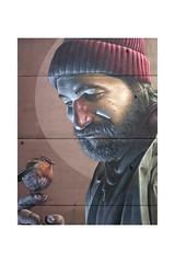 Untitled by Smug (Glasgow Street Art) (Explored 18/07/18) (tetleyboy) Tags: streetart glasgow scotland art frame man bird wall robin