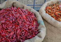 Selling dried chilli peppers (phuong.sg@gmail.com) Tags: asia asian background bazaar business chilli chillies color cultures dried dry ethinicity food freshness group india indian jute large market objects organic outdoors pepper red retail rural sack sale selling shop small spice stall store street trade variation