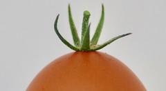 Tomat-egg (Charlotte P.Denoel) Tags: foodart fineart art conceptart egg tomato food macro