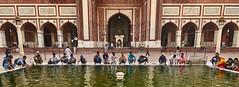 Jama Masjid, Delhi - India (Joao Eduardo Figueiredo) Tags: jama masjid delhi india muslim worship religion nikon nikond850 joaofigueiredo joaoeduardofigueiredo jamamasjid mosque ablution ritual purification