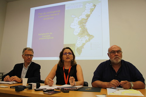 RdP Declaración 1er brote de Xylella fastidiosa. Valencia (30-06-2017)