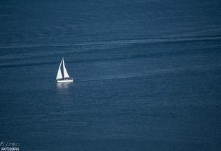 Sailing alone... San Diego Bay, California.