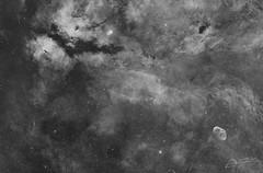 From Sadr to the Crescent Nebula (Alejandro Pertuz) Tags: nebula mosaic sadr crescent gas dust universe cosmos astronomy space longexposure camera telescope blackandwhite narrowband astrometrydotnet:id=nova2723466 astrometrydotnet:status=solved