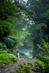 Iwato River (debbykwong) Tags: iwatoriver takachiho amanoyasugawara nature japan kyushu miyazaki trailwalk naturelover travel travelphoto leica leicaq leicaqtyp116 leicaphoto leicacamera japanlover japandiscovery japantravel