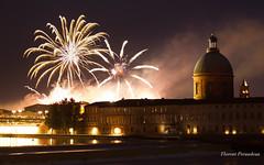 feu d'artifice 14 Juillet 2018 à Toulouse (Flox Papa) Tags: feu dartifice 14 juillet 2018 à toulouse