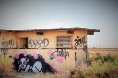 Meet Trollita (Spebak) Tags: spebak canon canondslr canon70d deserted desolate grafitti saltonsea tagging empty