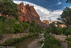 Zion-04-07626 (inhshnds) Tags: utah brycecanyonnp archesnp canyonlandsnp zionnp antelopecanyon