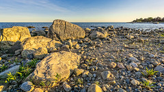 Rock Formations at Late Afternoon (Alan Charles) Tags: ct connecticutshore hammonassetbeachstatepark hammonassetstateparkmeigspoint meigspoint seascape beach lateafternoon ocean rockyshore sea shore