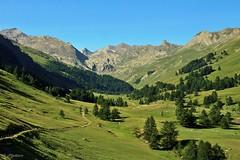 Vallon du Lauzanier (cielomiomarito) Tags: montagna montanha mountain alps alpesdehauteprovence