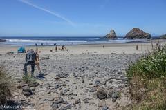 Coastal Life (Zimbrit) Tags: pacificocean beach oregon coastal coast sand
