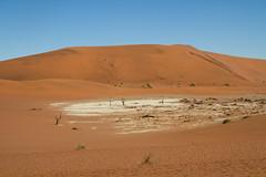 IMG_8580 (Tatjana_Schmid) Tags: namibia sossusvlei deadvlei wüste desert sand sanddunes dünen africa afrika landschaft landscape reise holiday urlaub travel