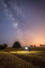 Searching For The Stars (Graham Daly Photography (ASINWP)) Tags: canon6d countycork grahamdalyphotography ireland lbracket landscapephotography sigma1424mmƒ28art twilight astro astronomyireland astrophotography barley belgooly field imagesofireland landscapesofireland milkyway nightphotography nightshoot nightsky outdoors reallyrightstuff rolleitripod space stars trees wheat imageblend compositeimage sonya7r sonyalpha sonycameras canoncameras