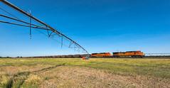 RR-20180710-BrushSub-124-e (skyviewtim) Tags: bnsf5667 coalload coloradorailroads coloradotrains irrigator messex merino colorado unitedstates us