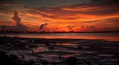 Exploring Other Planets (JDS Fine Art Photography) Tags: inspirational otherworldly spiritual beauty naturesbeauty sunset glorious