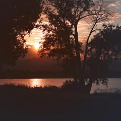 29 / 52 : 1 (Randomographer) Tags: 52weeks landscape longmont colorado sunset water lake clouds dusk beautiful 50mm prime square 29 52 2018 nature natural