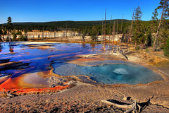 Firehole Spring, Firehole Lake Drive, Yellowstone National Park, (klauslang99) Tags: klauslang nature naturalworld northamerica yellowstone national park wyoming firehole lake spring volcanic landscape hot hotspring forest