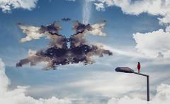 The Shapeshifter (felipemorin) Tags: surreal surrealism surrealist creative conceptual concept sky clouds rorschach psychology photoshop photomanipulation girl ink inkblot shape shapes interpretation projective subjective