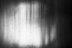 forest (semi-forgotten dreams) (Neko! Neko! Neko!) Tags: blackandwhite blackwhite bw mono monochrome forest forgotten night dream shadows memories emotion feeling subconsciousness expression expressionism