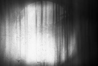 forest (semi-forgotten dreams)
