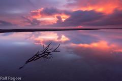 On Fire (fotoscape2009) Tags: sunrise australia queensland nudgeebeach stick ocean