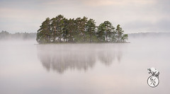 Misty island (Storm'sEndPhoto) Tags: panorama autopanogigapro stitched morning mist fog misty island atmosphere mood reflection calm peaceful lake järvi satakunta pinkjärvi softlight aamuvalo aamu kesä summer wideangle