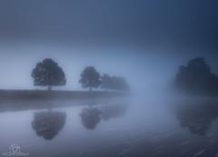 Eden Mist... (CamraMan.) Tags: eden river mist trees lazonby rivereden cumbria edenvalley nature longexposure canon6d canon1740mmlusm manfrotto ©davidliddle ©camraman thebluehour bluehour