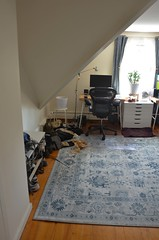 Office (osiristhe) Tags: dizzy cat apartment nikond5100 18200mm